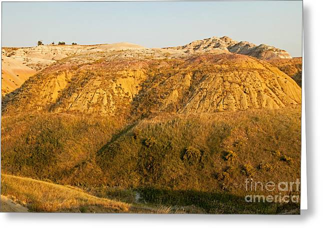 Yellow Mounds Overlook Badlands National Park Greeting Card