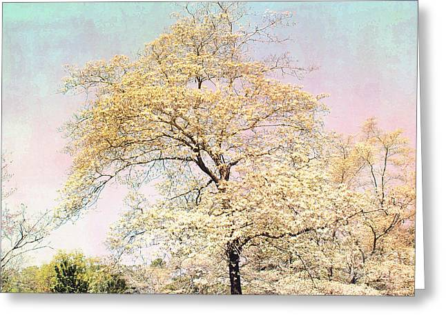 Yellow Pink Nature Trees - Dreamy Fantasy Surreal Yellow Pink Golden Trees Nature Landscape Greeting Card by Kathy Fornal