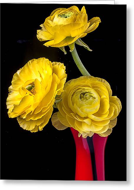 Yellow Ranunculus In Red Vase Greeting Card
