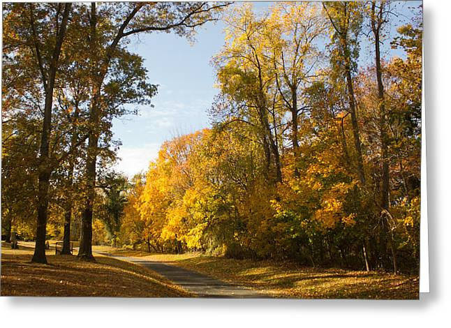 Greeting Card featuring the photograph Yellow Road by Jose Oquendo
