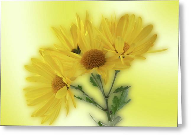 Yellow  Greeting Card