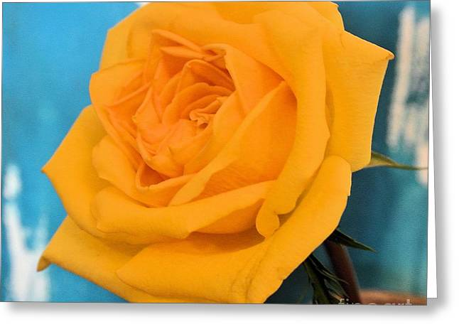 Yellow Rose Against Turquoise Greeting Card by Marsha Heiken