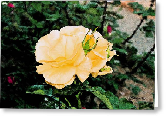 Yellow Rose And Bud Greeting Card by Christopher Bage