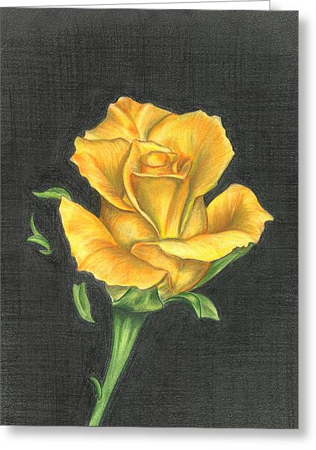 Greeting Card featuring the drawing Yellow Rose by Troy Levesque