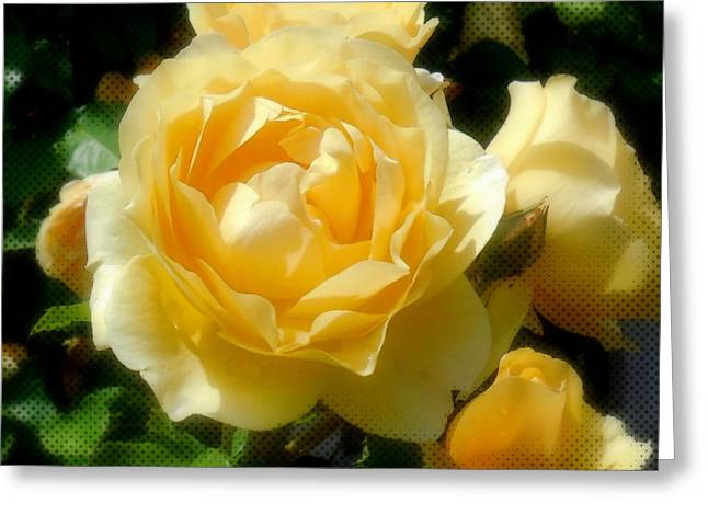 Yellow Roses Greeting Card by Jacqueline Dagenais