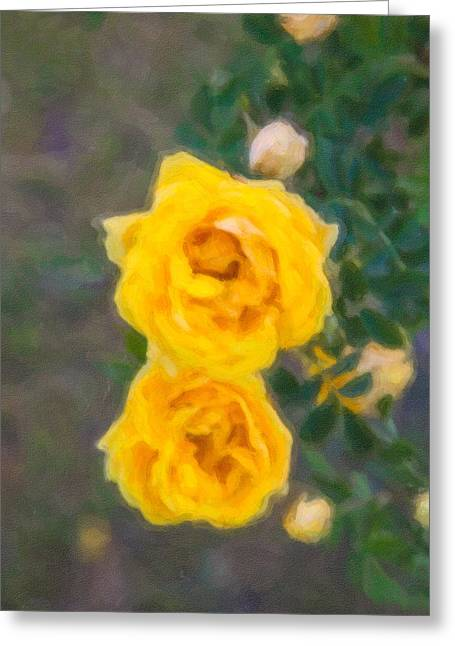 Yellow Roses On A Bush Greeting Card by Omaste Witkowski