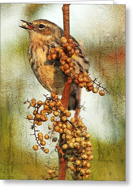 Yellow-rumped Warbler With Seed Greeting Card