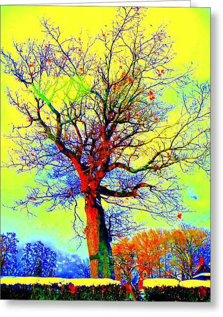 Yellow Sky Greeting Card by Jodie Marie Anne Richardson Traugott          aka jm-ART