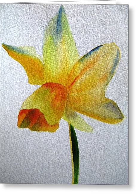 Yellow Spring Daffodil Greeting Card by Sacha Grossel