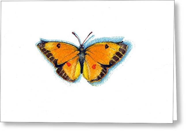 Yellow Sulphur Greeting Card