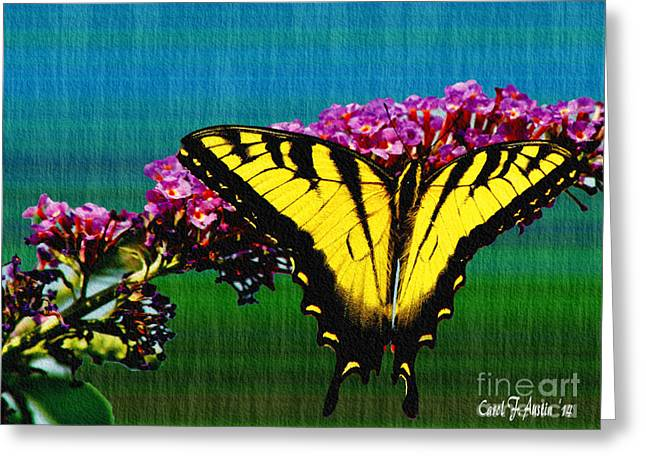 Yellow Swallowtail Butterfly Greeting Card by Carol F Austin