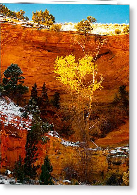 Yellow Tree Greeting Card