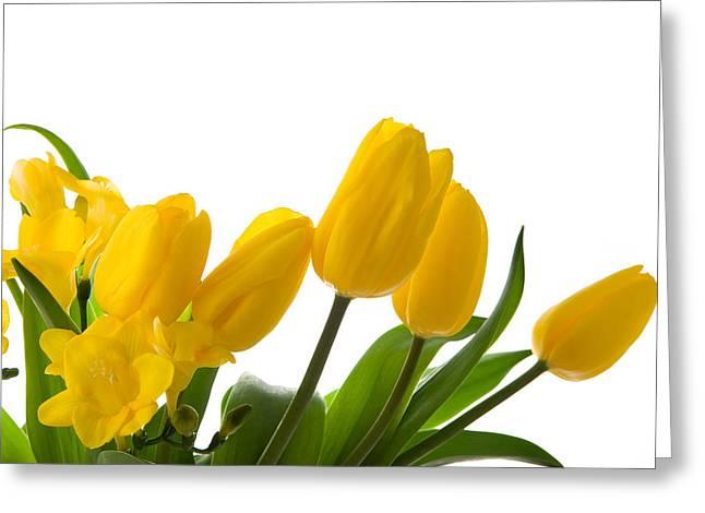 Yellow Tulips On White Greeting Card by Anna Kaminska
