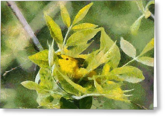 Yellow Warbler Painting Greeting Card by Dan Sproul