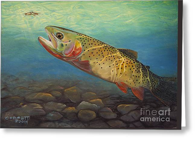 Yellowstone Cut Takes A Salmon Fly Greeting Card