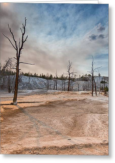 Yellowstone Desolation Greeting Card by Andres Leon