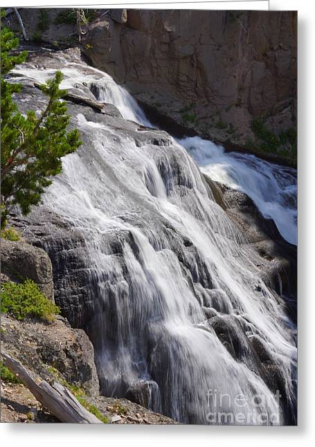 Yellowstone Gibbon Falls Greeting Card