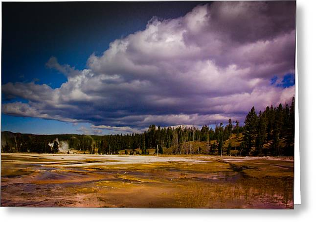 Greeting Card featuring the photograph Yellowstone In October by Janis Knight