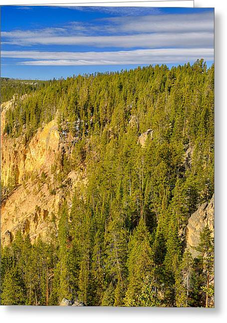 Yellowstone Lookout Point Right Panel Greeting Card by Greg Norrell