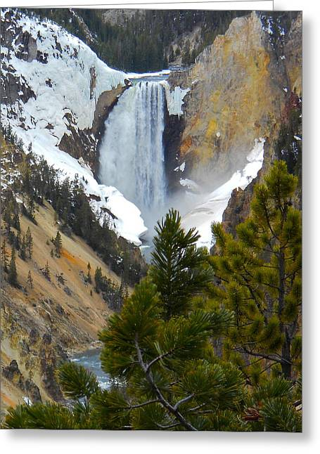 Greeting Card featuring the photograph Yellowstone Lower Falls In Spring by Michele Myers