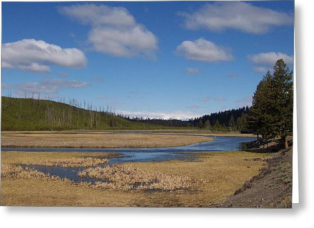 Yellowstone Park 2 Greeting Card