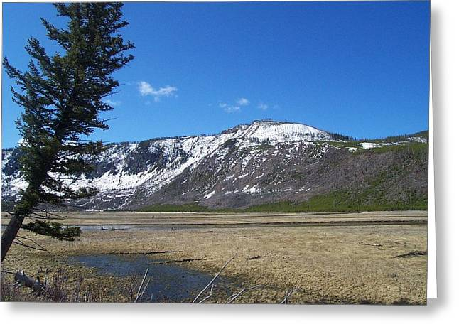 Yellowstone Park Beauty 1 Greeting Card