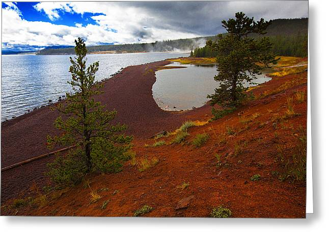 Yellowstone Park Usa Greeting Card