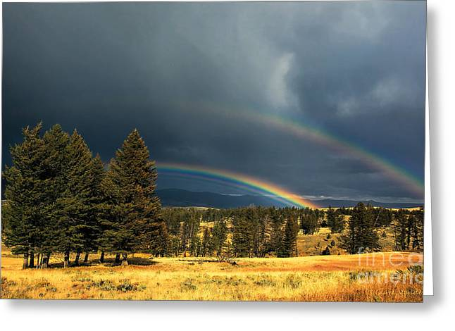 Yellowstone Rainbow Greeting Card by Clare VanderVeen