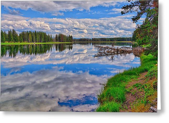 Greeting Card featuring the photograph Yellowstone River Reflections by Greg Norrell