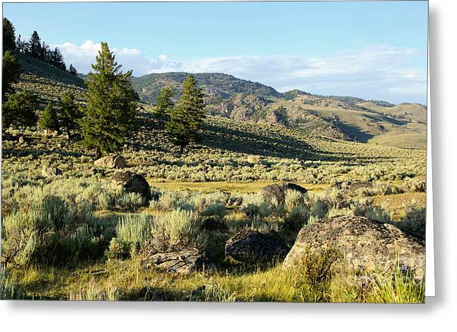 Yellowstone Scenery Greeting Card by Sophie Vigneault