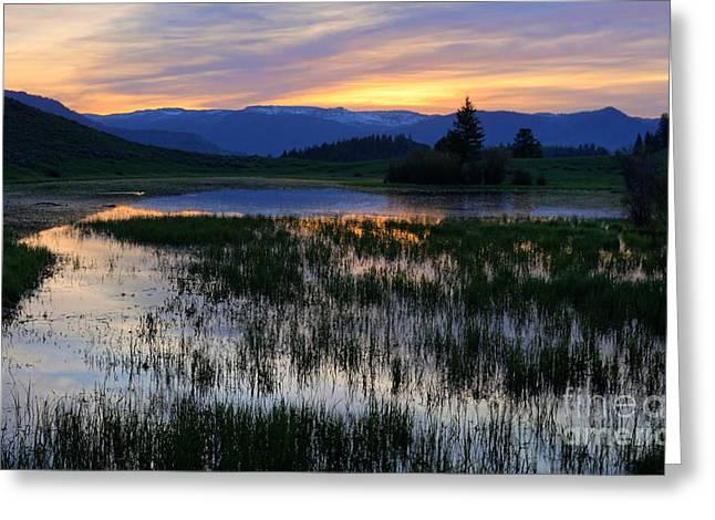 Yellowstone Sunrise Greeting Card