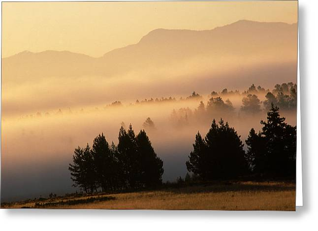 Yellowstone Sunrise Greeting Card