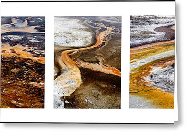 Yellowstone Triptych Greeting Card