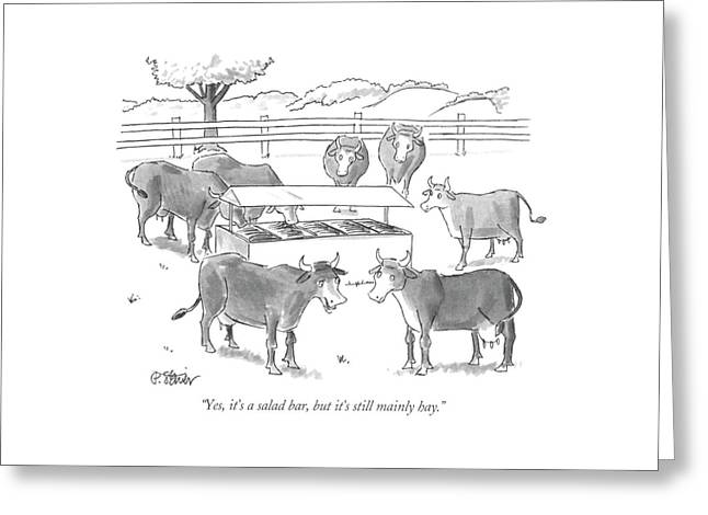 Yes It's A Salad Bar Greeting Card