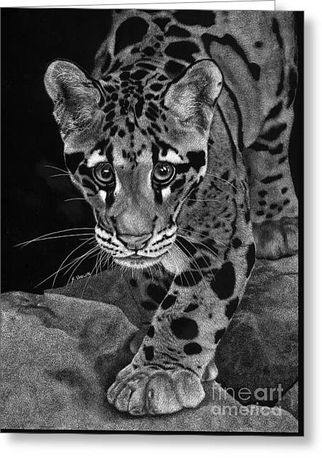 Yim - The Clouded Leopard Greeting Card
