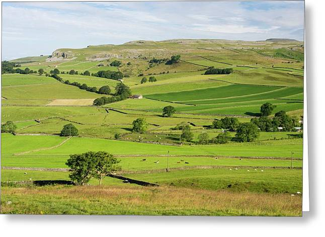 Yorkshire Dales Scenery Greeting Card by Ashley Cooper