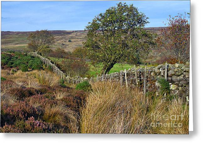 Yorkshire Moors England Greeting Card