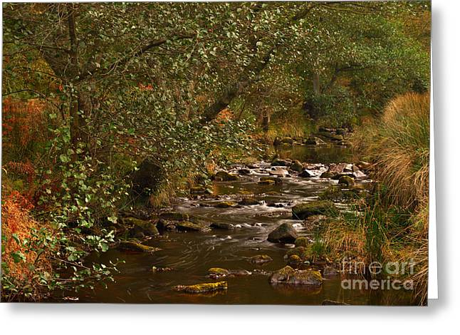 Yorkshire Moors Stream In Autumn Greeting Card