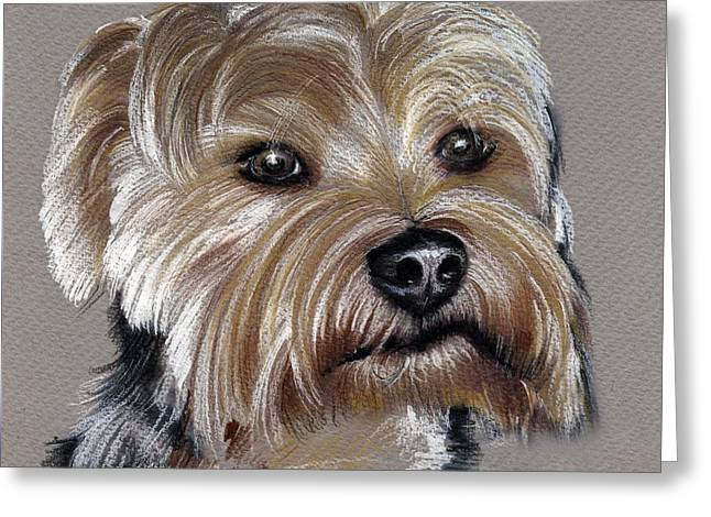 Yorkshire Terrier- Drawing Greeting Card