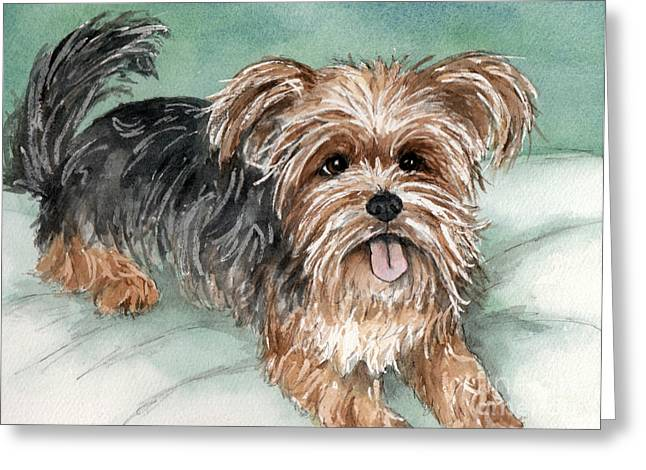 Yorkshire Terrier On Bed Greeting Card by Cherilynn Wood