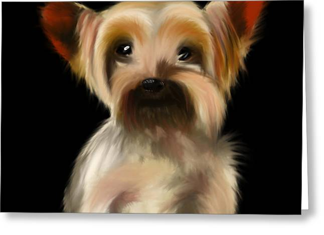 Yorkshire Terrier Pup Greeting Card