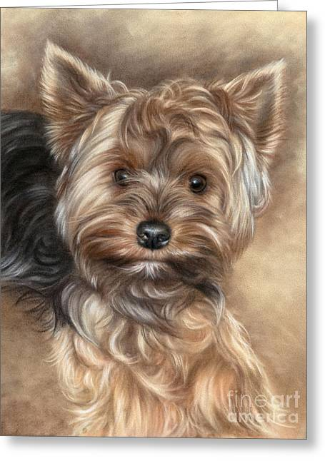 Yorkshire Terrier Greeting Card by Tobiasz Stefaniak