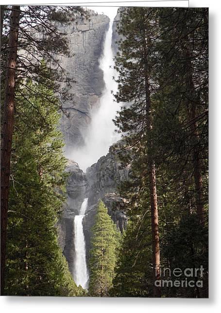 Yosemite Falls 2013 Greeting Card by Audrey Van Tassell