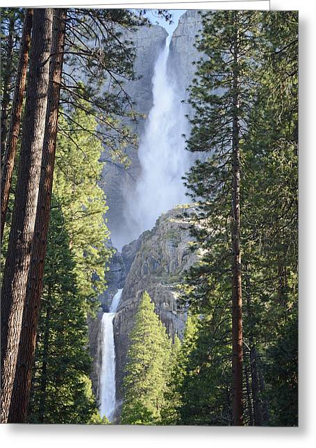 Yosemite Falls In Morning Splendor Greeting Card by Bruce Gourley