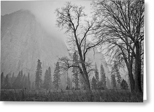 Greeting Card featuring the photograph Yosemite Storm by Priya Ghose