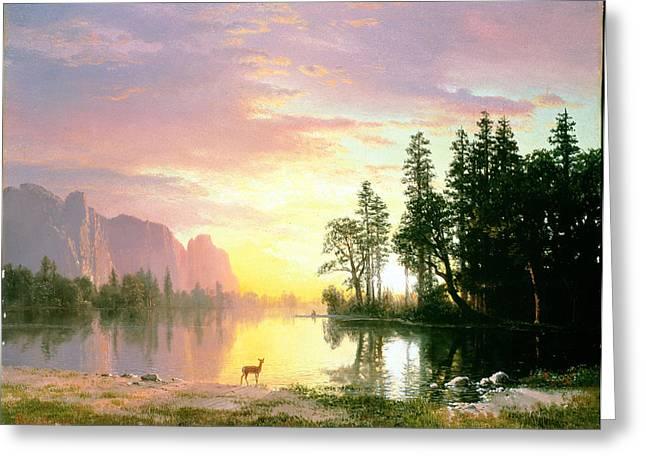 Yosemite Valley Oil On Canvas Greeting Card by Albert Bierstadt