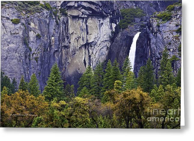 Yosemite Water Fall Greeting Card