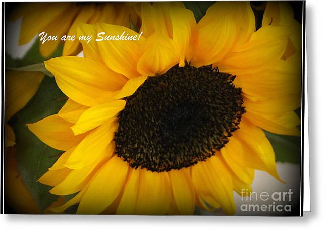 You Are My Sunshine - Greeting Card Greeting Card
