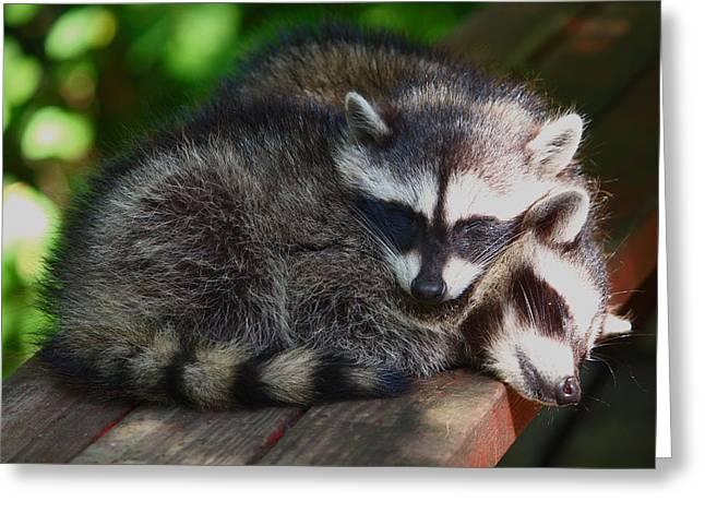 You Make The Best Pillow Greeting Card by Kym Backland