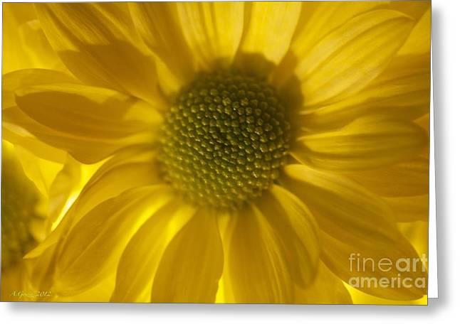 You'll Always Be Inside Of Me Like A Flower You Grow Greeting Card by  Andrzej Goszcz
